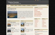 cover-wp-theme
